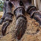 """Jaurrasic Foot"" by John  Kapusta"