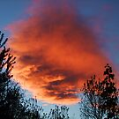 Fire Cloud Sunset by Thomas Stevens