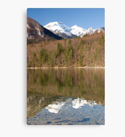 Alpine spring Canvas Print