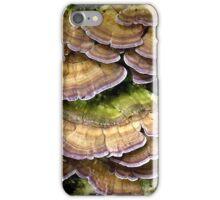 Lovely Shelves iPhone Case/Skin