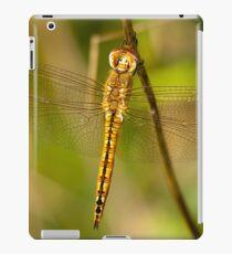 Hanging Tough iPad Case/Skin