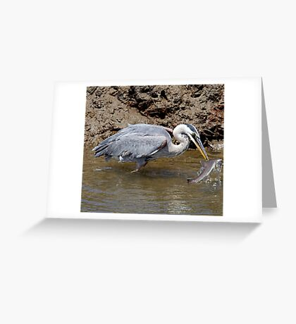 Blue Heron Fishing Greeting Card