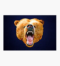 Poly Bear Photographic Print