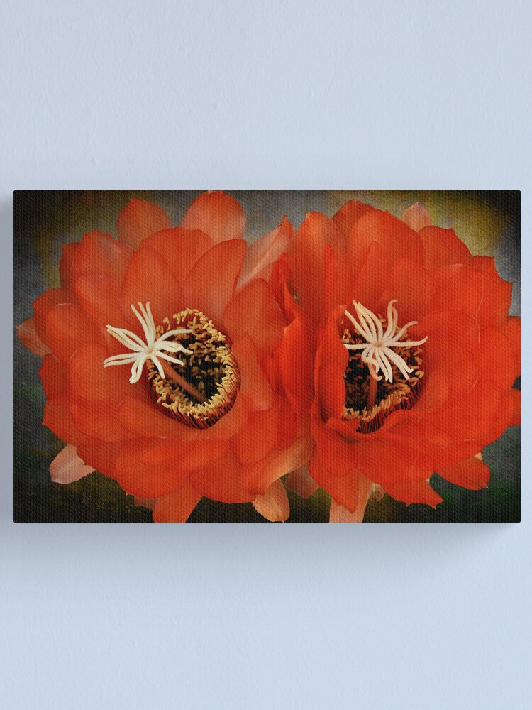 Alternate view of We make a Beautiful Pair Canvas Print