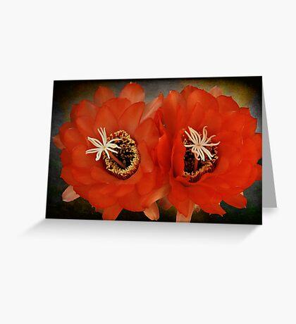 We make a Beautiful Pair Greeting Card
