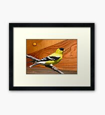 male goldfinch Framed Print