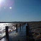 Sandy Creek Pier by Brandi Beddingfield
