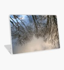 In the World of Oberon and Titania Laptop Skin