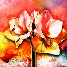 Spanish color splash in bloom by mjvision Mia Niemi by mjvisiondesign