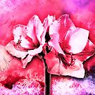 Spanish color splash in bloom neon pink by mjvision Mia Niemi by mjvisiondesign