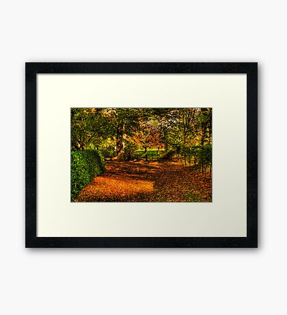 Country Lanes - Mount Wilson, Blue Mountains - The HDR Experience Framed Print
