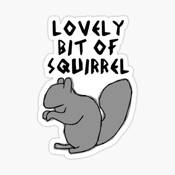 Lovely Bit of grey squirrel  Sticker