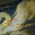 Birthday Magic by Angele Ann  Andrews