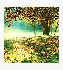 Colorful morning. Photographic Print