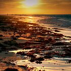 Rising Sun at Queenscliff, Victoria by Christine Smith