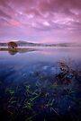 Across Carron Valley Reservoir toward Meikle Bin... by David Mould