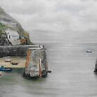 Wintry Day ,Porthgain by WILT