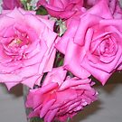 Beauty of Pink for Bouquet  by EdsMum