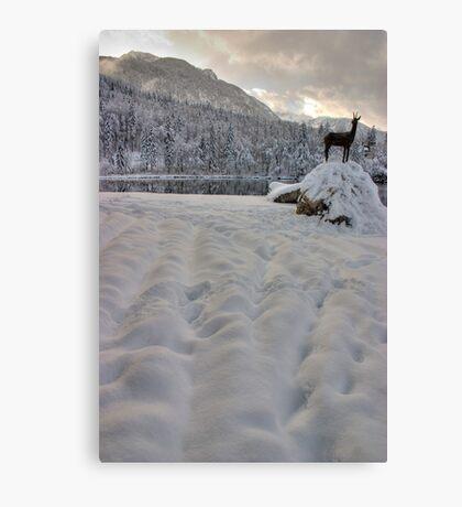 Alpine winter Canvas Print