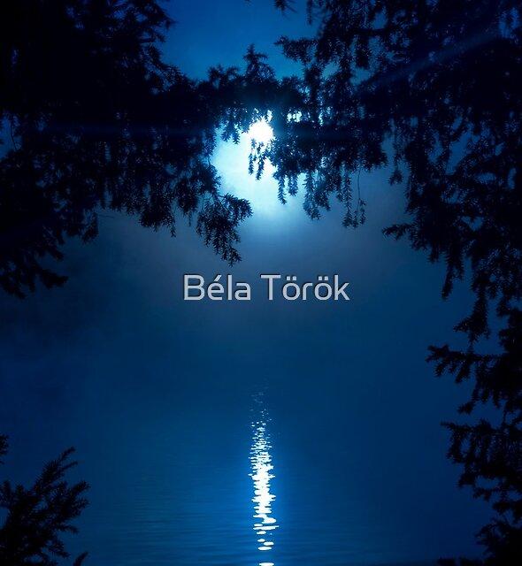Blue Moon by Béla Török
