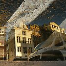 Reflections of Amsterdam - Zebra Style by AmsterSam