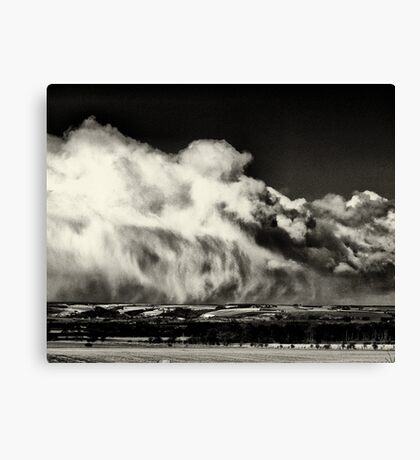 A reminder of winter Canvas Print