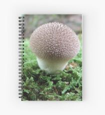 Witch's Cupcake Shroom Spiral Notebook