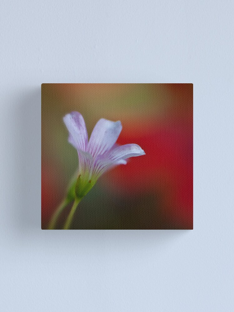 Alternate view of A bokeh for all Moms  Canvas Print