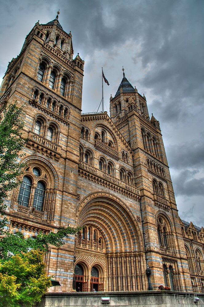 The Natural History Museum by Tim Hall