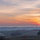 Spring sunset in the vineyards of Collio Friulano by zakaz86