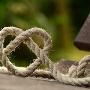 Knots of heart by NaCl01