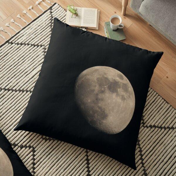 Moonshot #1 Floor Pillow