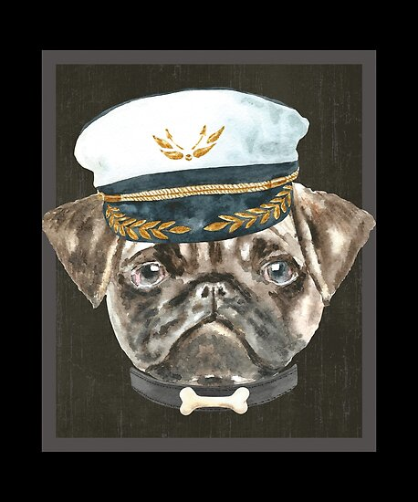 6b77760663b Pug Captain Hat Collar Bone Dogs In Clothes
