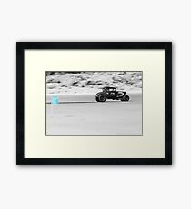 239 Framed Print