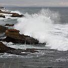 Sea 0263 by João Castro