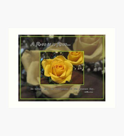 A rose is a rose... Art Print