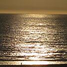 Santa Monica Ocean by Snowkitten