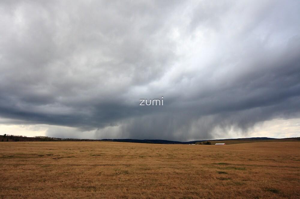 Az eső lába (the rain) by zumi