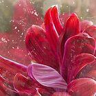 Fountain Chrysanthemum von Marilyn Cornwell