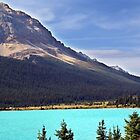 Bow Lake (3) by Jann Ashworth