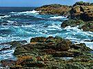"""Oceans Blue"" by debsphotos"