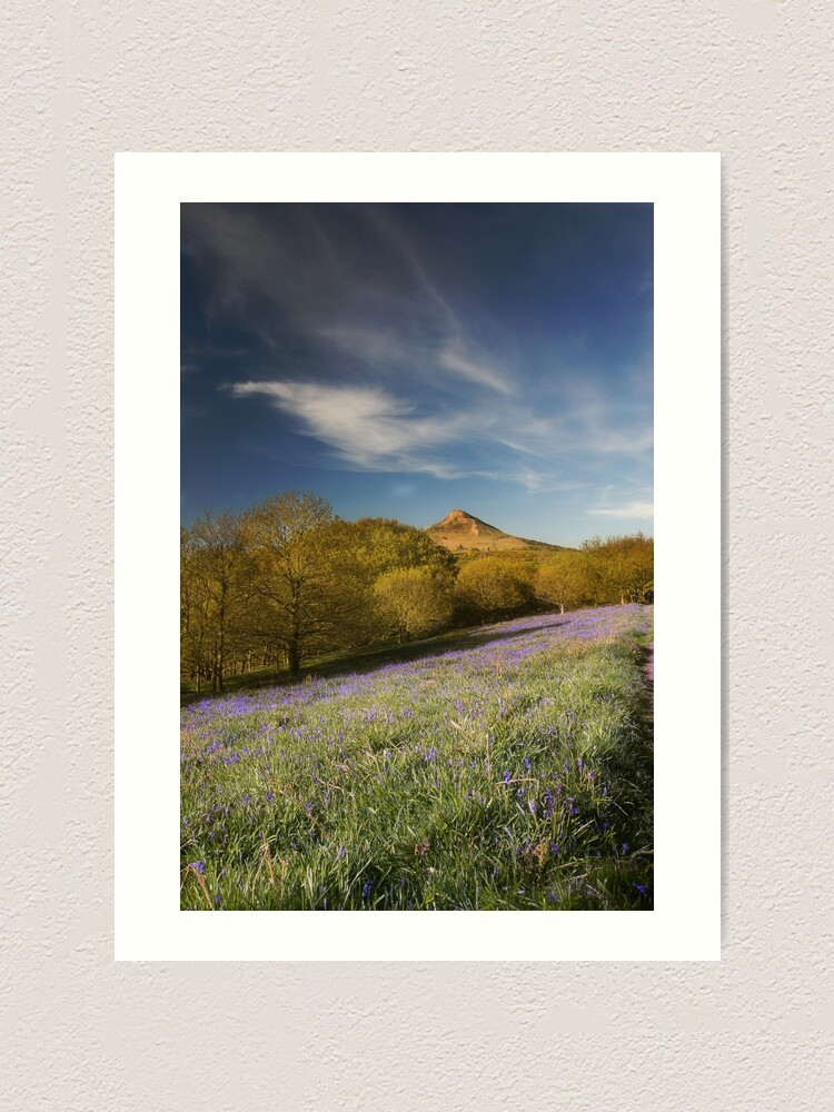 Alternate view of The Bluebells at Roseberry Topping Art Print