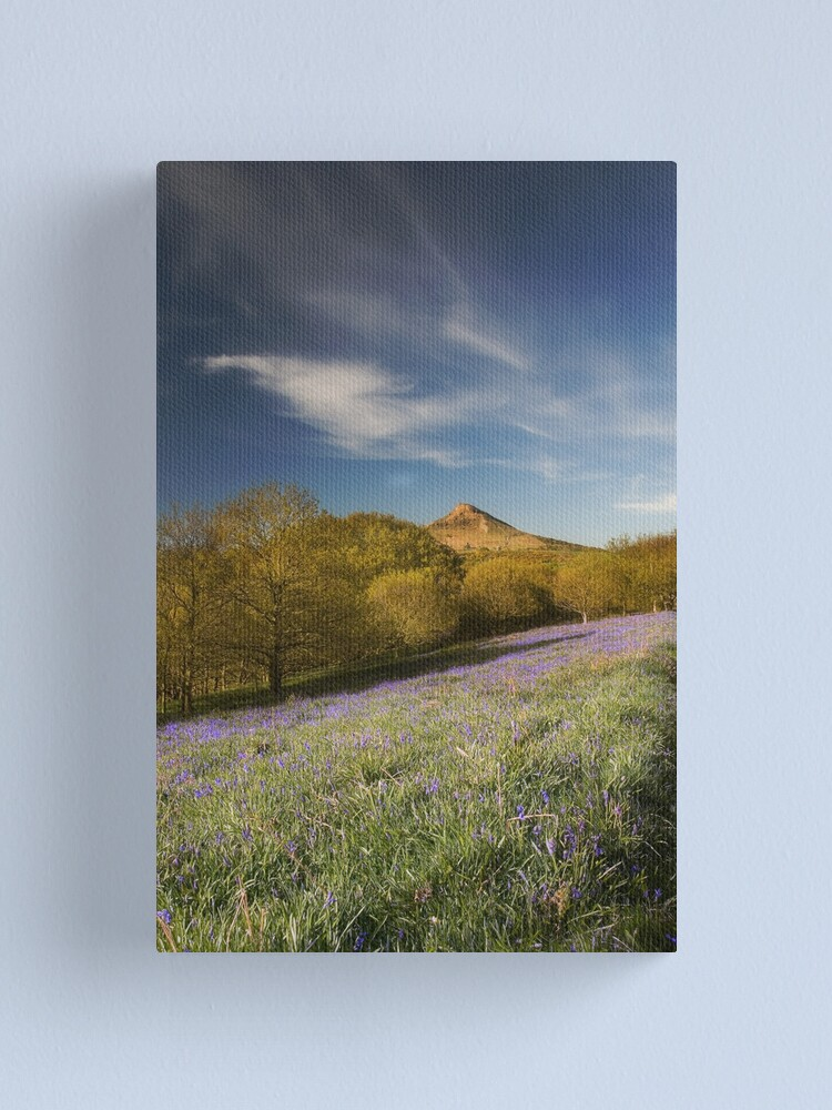 Alternate view of The Bluebells at Roseberry Topping Canvas Print