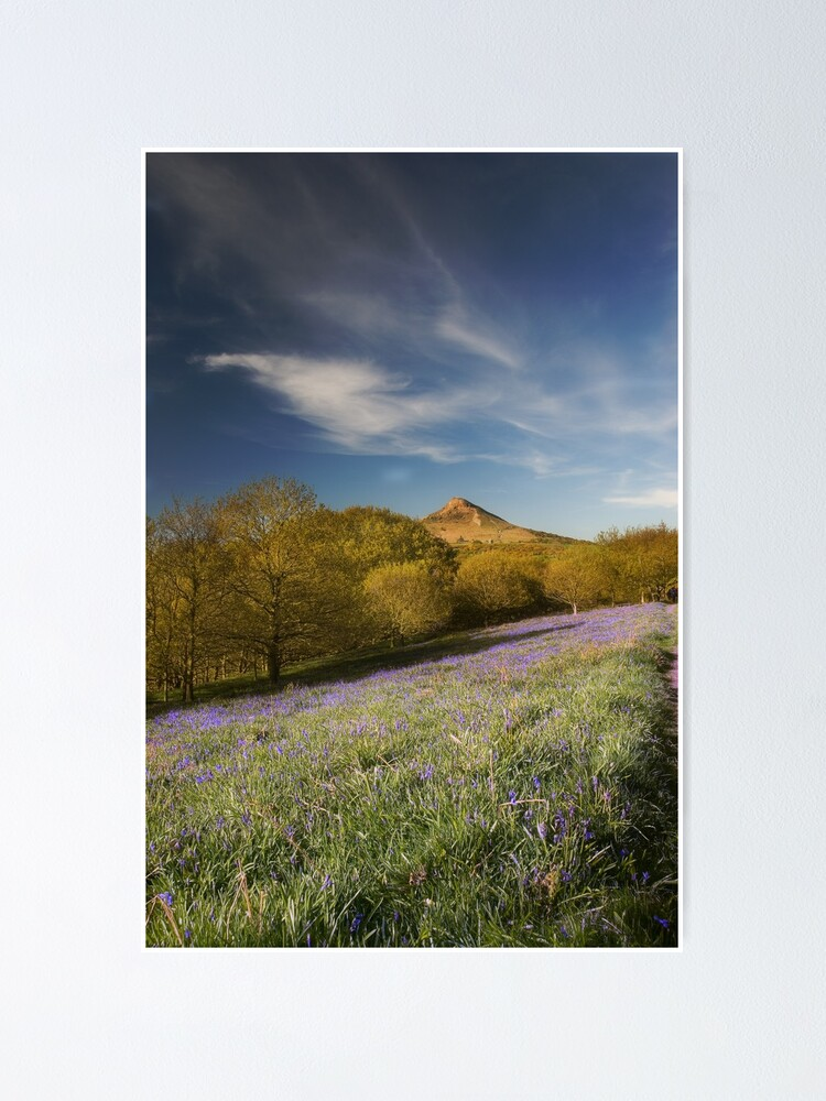 Alternate view of The Bluebells at Roseberry Topping Poster