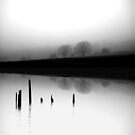 Dead calm and foggy by Richard Horsfield