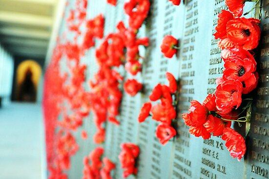 Wall of Honour by lu138