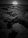 Moonlight On the Rocks by Jen Waltmon