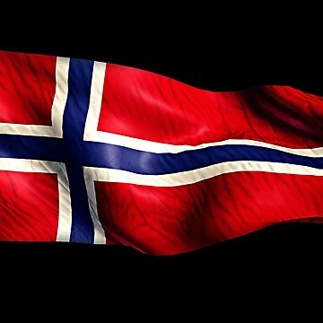 Norwegian Flag T-shirt Blowing In The Wind Souvenir Gift by peter2art