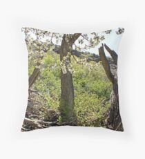Apple Blossums in the Canyon Throw Pillow