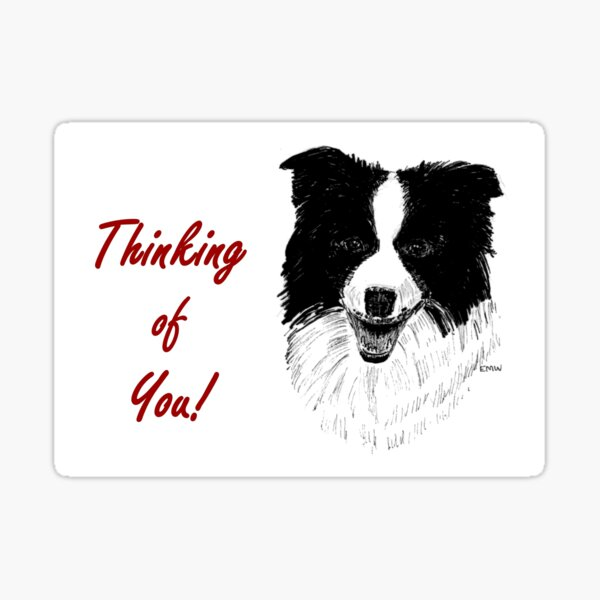 Border Collie Thinking of You Card Sticker